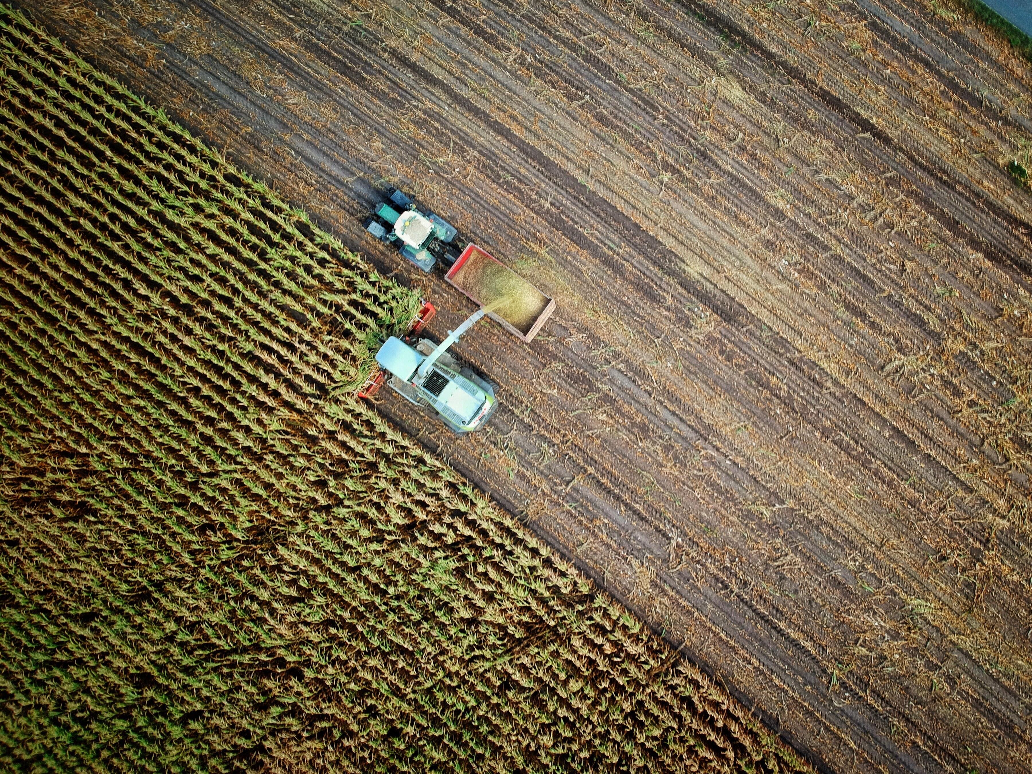 Foment i l'Institut Agrícola demanen la retirada definitiva de l'Agència de Patrimoni Natural